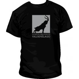 Camiseta FIV 2013